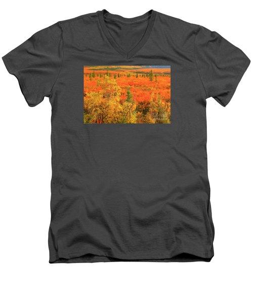 Northern Tundra Men's V-Neck T-Shirt