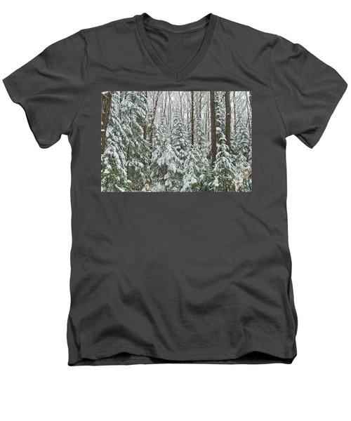 Northern Winter Men's V-Neck T-Shirt by Michael Peychich
