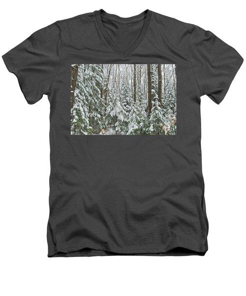 Northern Winter Men's V-Neck T-Shirt