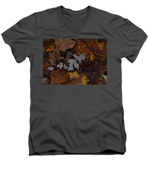 Oak And Maple Leaves Men's V-Neck T-Shirt