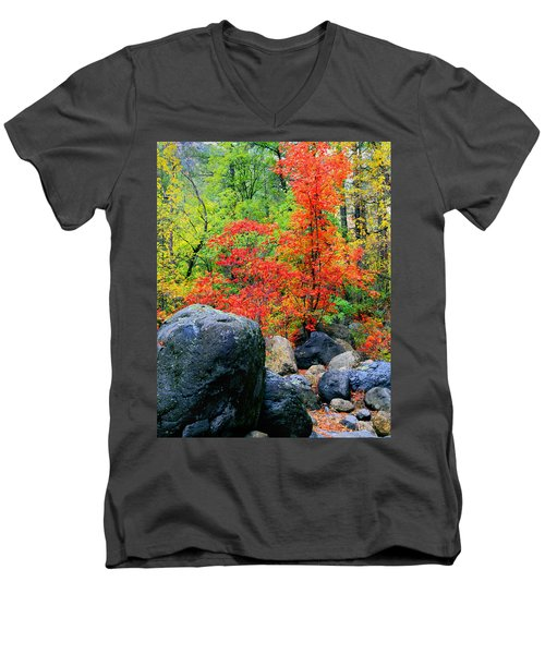 Oak Creek Canyon Red Men's V-Neck T-Shirt