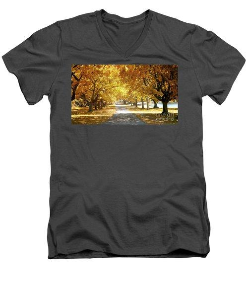 Oak Tree Avenue In Autumn Men's V-Neck T-Shirt