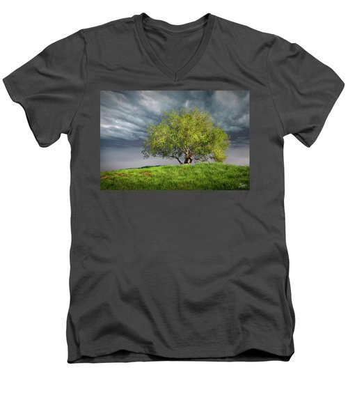 Oak Tree With Tire Swing Men's V-Neck T-Shirt