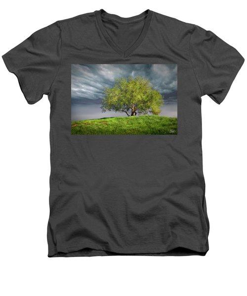 Oak Tree With Tire Swing Men's V-Neck T-Shirt