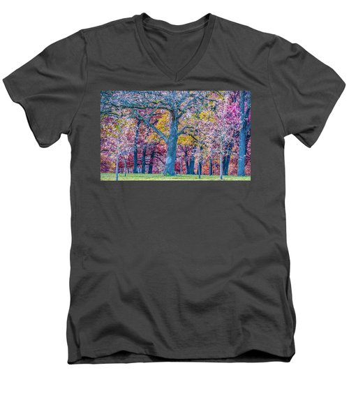 Oak Trees At Fall Men's V-Neck T-Shirt