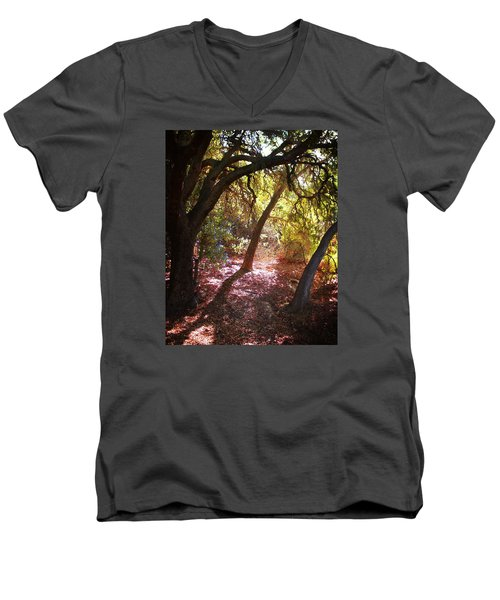 Men's V-Neck T-Shirt featuring the photograph Oaken Woodland 2 by Timothy Bulone