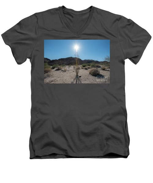 Ocotillo Glow Men's V-Neck T-Shirt by Robert Loe