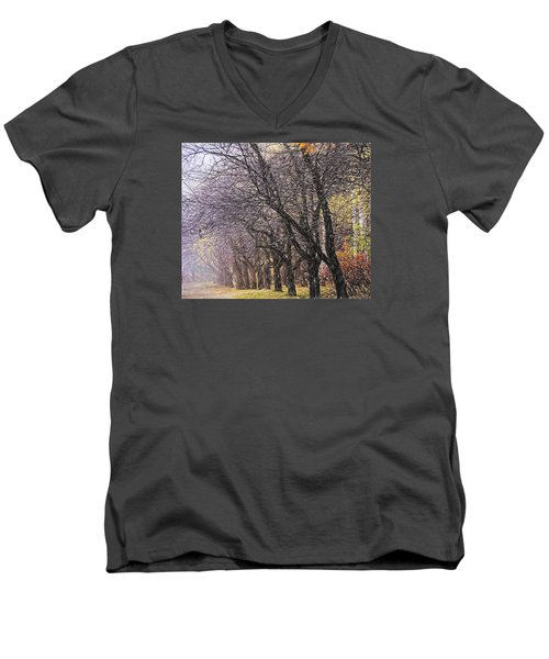Men's V-Neck T-Shirt featuring the photograph October 3 by Vladimir Kholostykh