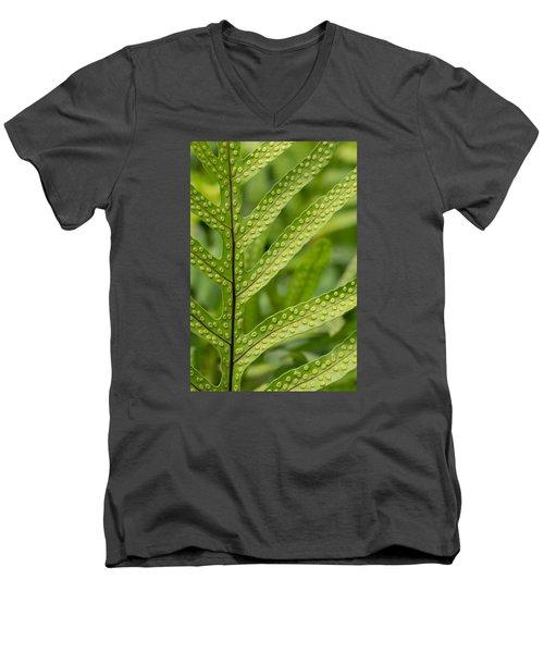 Oh Fern Men's V-Neck T-Shirt by Christina Lihani