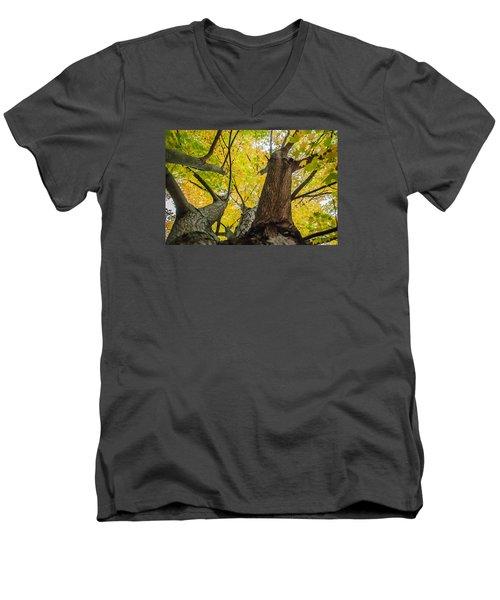 Ohio Pyle Colors - 9687 Men's V-Neck T-Shirt by G L Sarti