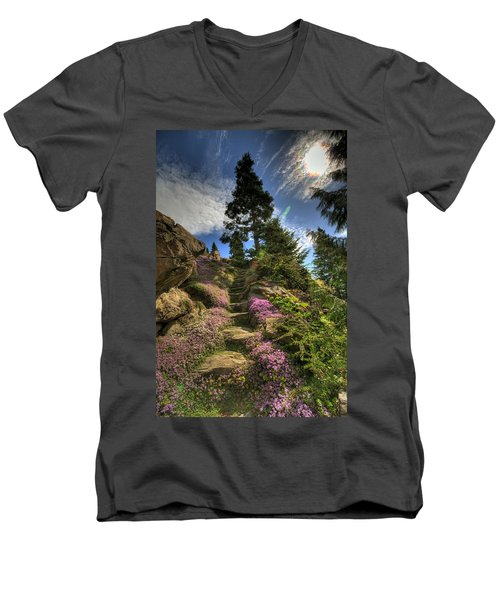 Ohme Gardens Men's V-Neck T-Shirt