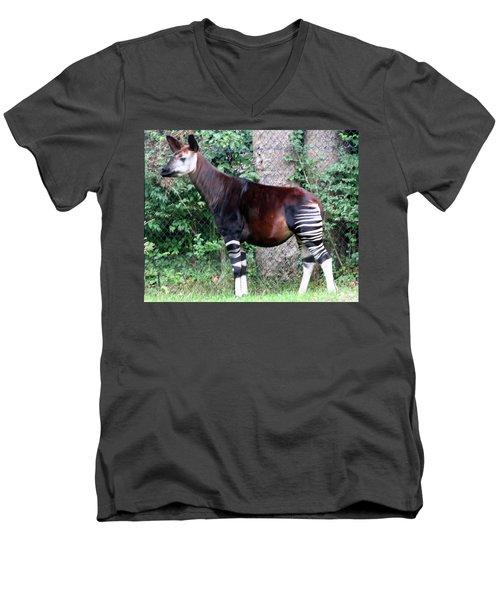Okapi Men's V-Neck T-Shirt