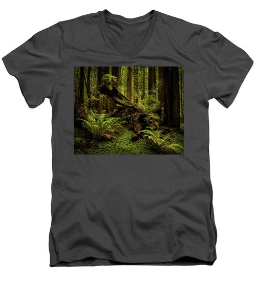 Old Growth Forest Men's V-Neck T-Shirt