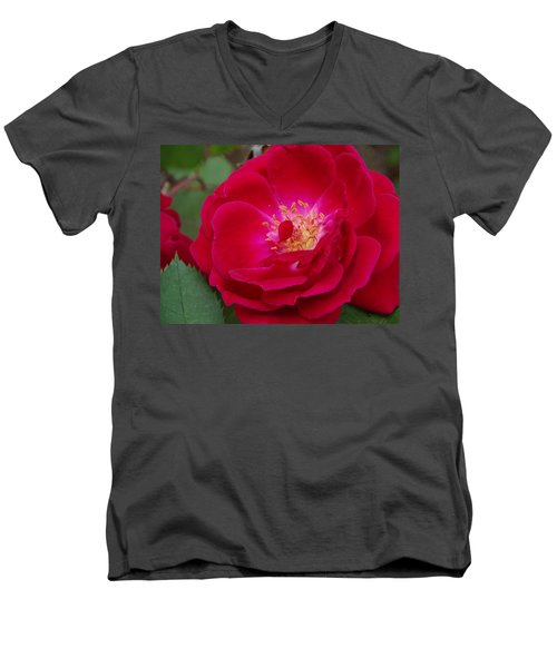 Old Homestead Rose Men's V-Neck T-Shirt