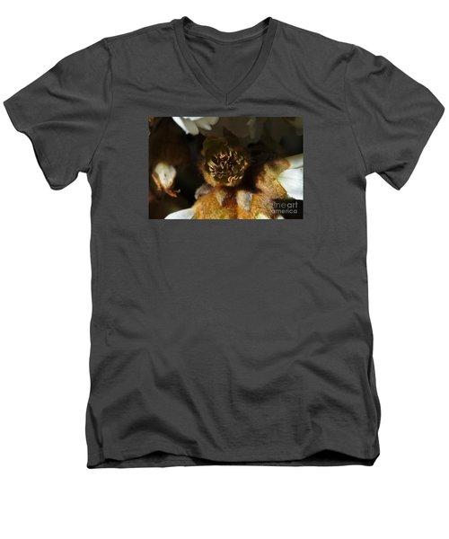 Old Loquat Tree Flower Men's V-Neck T-Shirt by Angelo DeVal