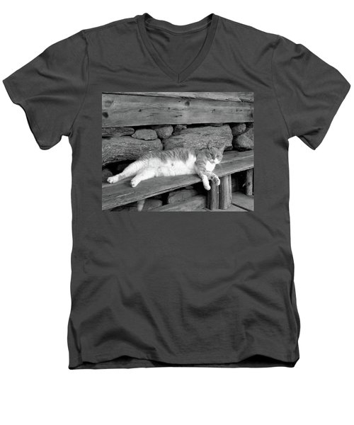 Men's V-Neck T-Shirt featuring the photograph Old Mill Cat by Sandi OReilly