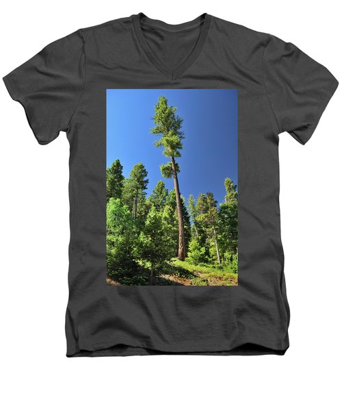 Old Ponderosa Men's V-Neck T-Shirt