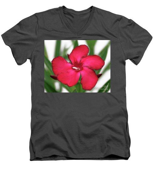 Oleander Blood-red Velvet 1 Men's V-Neck T-Shirt
