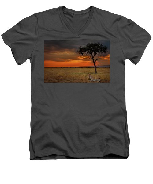 On A  Serengeti Evening  Men's V-Neck T-Shirt