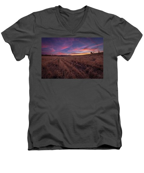 On An  Evening In July Men's V-Neck T-Shirt