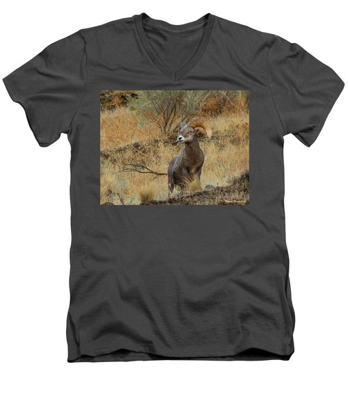 On Guard Men's V-Neck T-Shirt