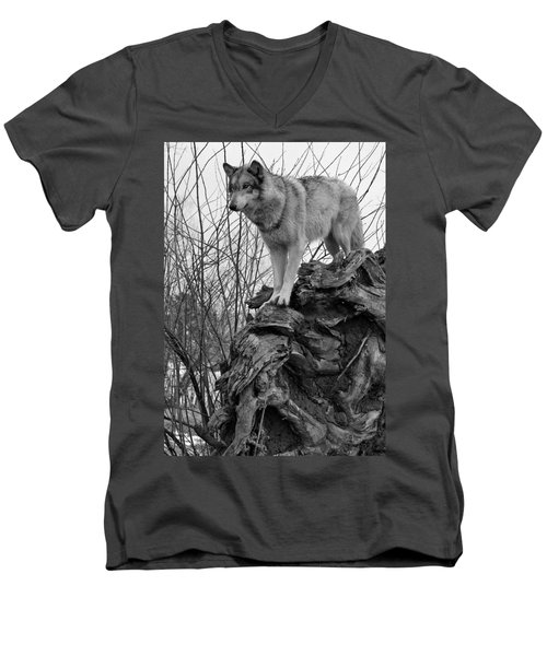 Men's V-Neck T-Shirt featuring the photograph On Top by Shari Jardina