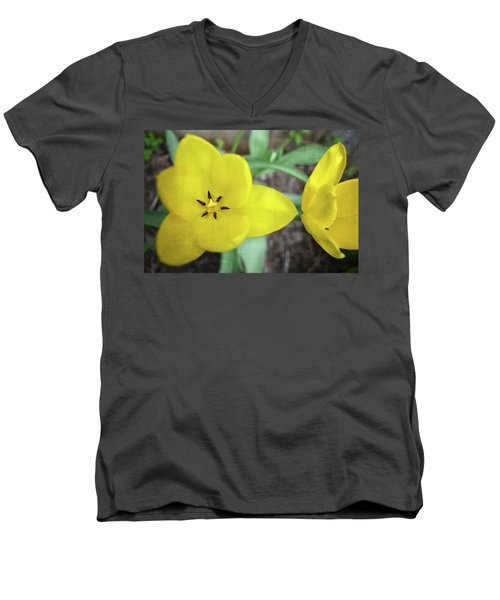 Men's V-Neck T-Shirt featuring the photograph One And A Half Yellow Tulips by Michelle Calkins