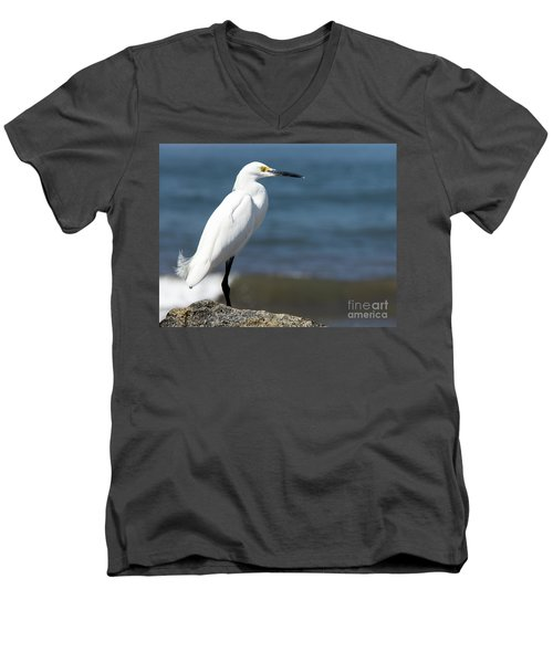 One Classy Chic Wildlife Art By Kaylyn Franks Men's V-Neck T-Shirt