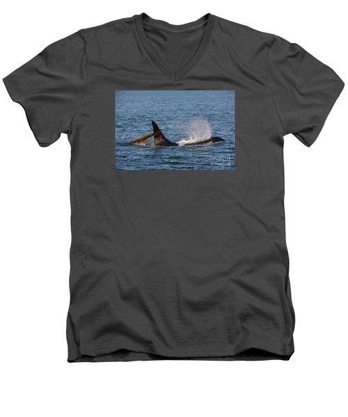Men's V-Neck T-Shirt featuring the photograph Onyx L87 by Gayle Swigart