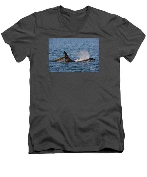Onyx L87 Men's V-Neck T-Shirt by Gayle Swigart