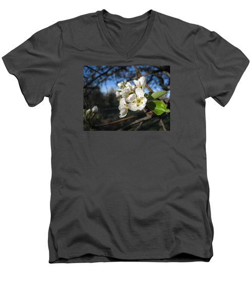 Open For Beesness Men's V-Neck T-Shirt