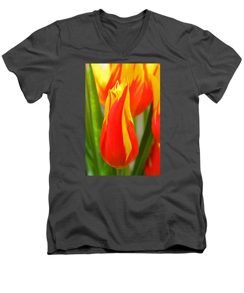 Orange And Yellow Tulips Men's V-Neck T-Shirt