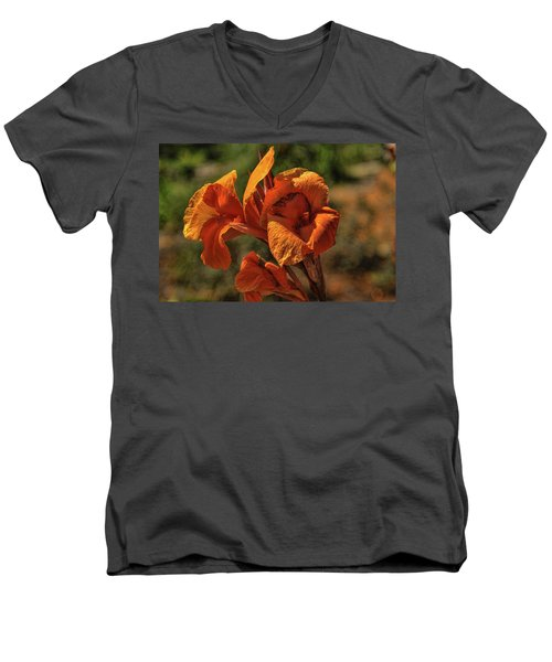 Orange Beauty Men's V-Neck T-Shirt