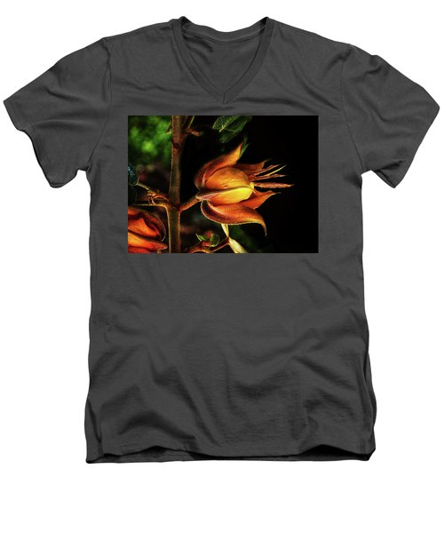 Orange Burst Men's V-Neck T-Shirt
