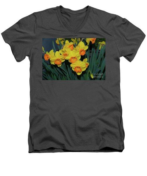 Orange-centered Daffodils Men's V-Neck T-Shirt