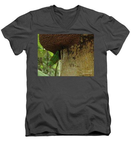 Orange -chinned Parakeet  On A Termite Mound Men's V-Neck T-Shirt