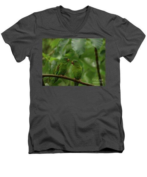 Orange-chinned Parakeets-  Men's V-Neck T-Shirt