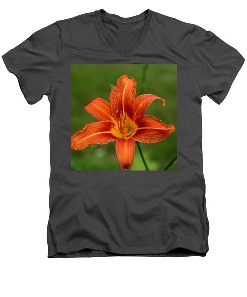 Orange Day Lily No.2 Men's V-Neck T-Shirt