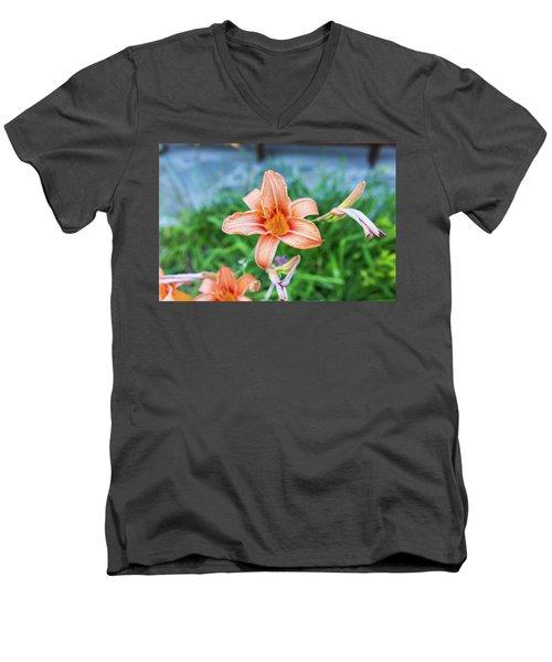 Orange Daylily Men's V-Neck T-Shirt