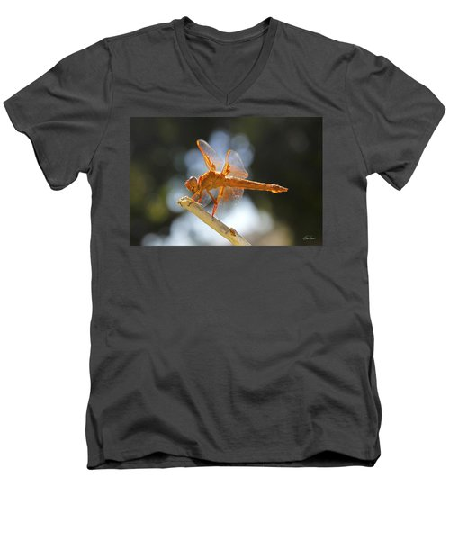 Orange Dragonfly Men's V-Neck T-Shirt