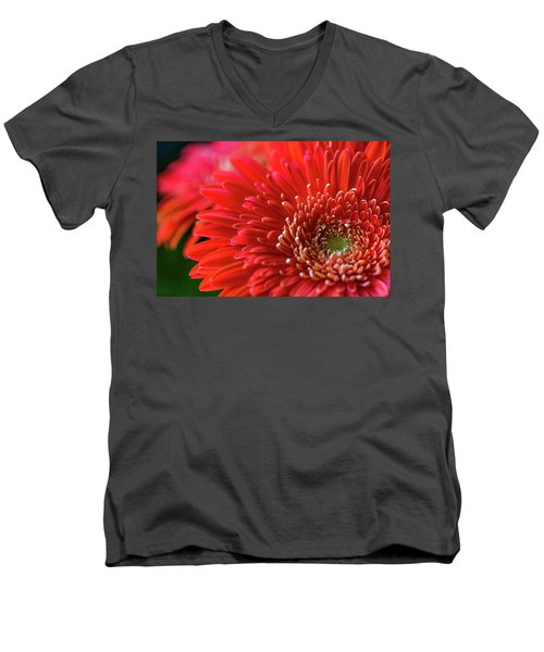 Men's V-Neck T-Shirt featuring the photograph Orange Gerbera by Clare Bambers