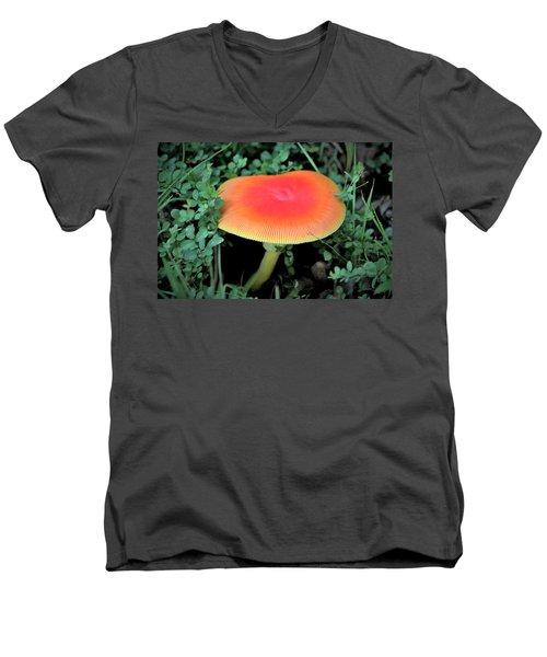 Orange Glow  Men's V-Neck T-Shirt