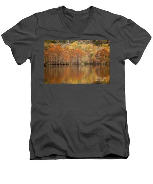Orange Pool Men's V-Neck T-Shirt by Iris Greenwell