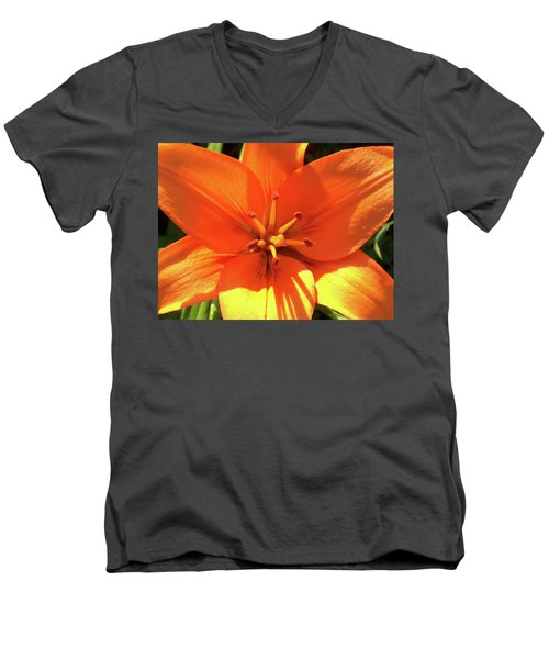 Orange Pop Men's V-Neck T-Shirt
