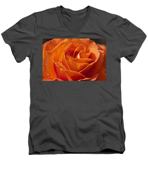Orange Rose 2 Men's V-Neck T-Shirt