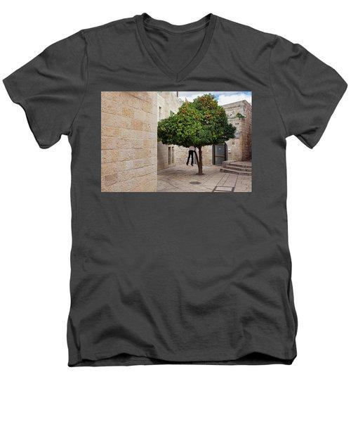 Orange Tree Men's V-Neck T-Shirt
