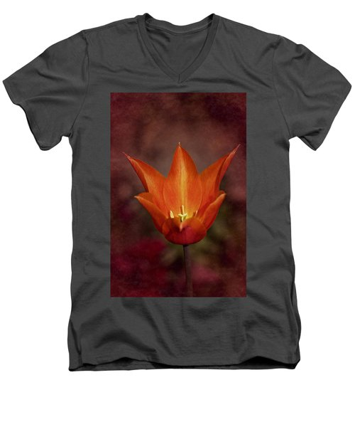 Orange Tulip Men's V-Neck T-Shirt by Richard Cummings