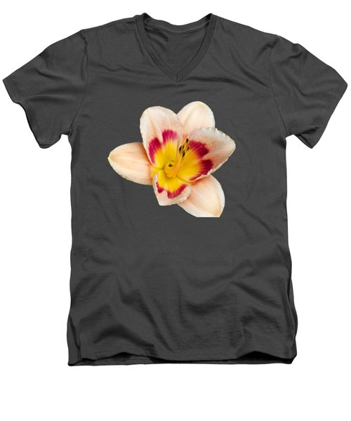 Orange Yellow Lilies Men's V-Neck T-Shirt