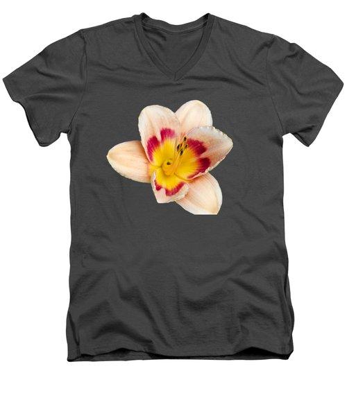 Orange Daylilies Men's V-Neck T-Shirt