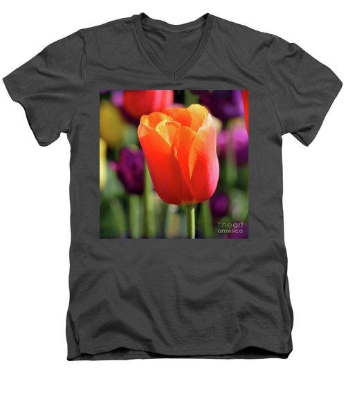 Orange Tulip Square Men's V-Neck T-Shirt